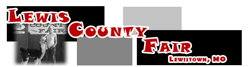 Lewis County Fair Website Banner